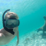 Underwater selfie with a sea lion