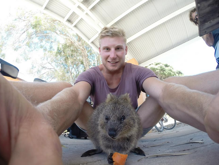 Dan taking a selfie with a quokka eating a carrot