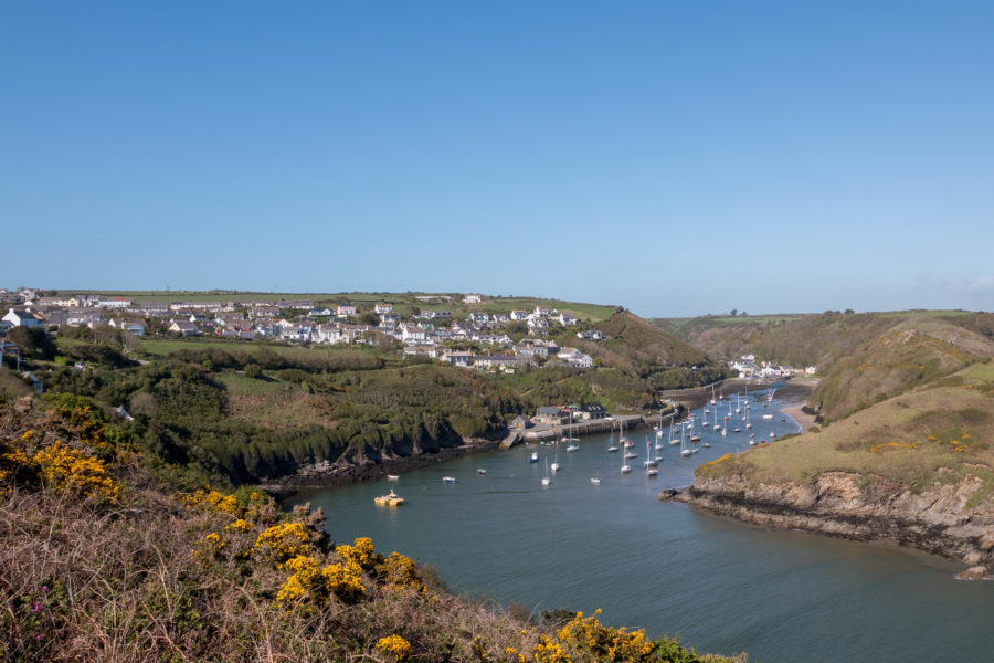 Looking over Solva from atop the walkway, boats dotting the inlet
