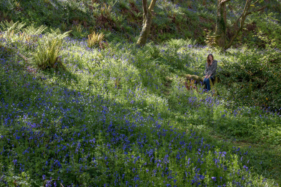 Tegan sitting the back right of the picture on a stump surrounded by blue bells