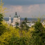 Buda castle through yellow/lime green foliage