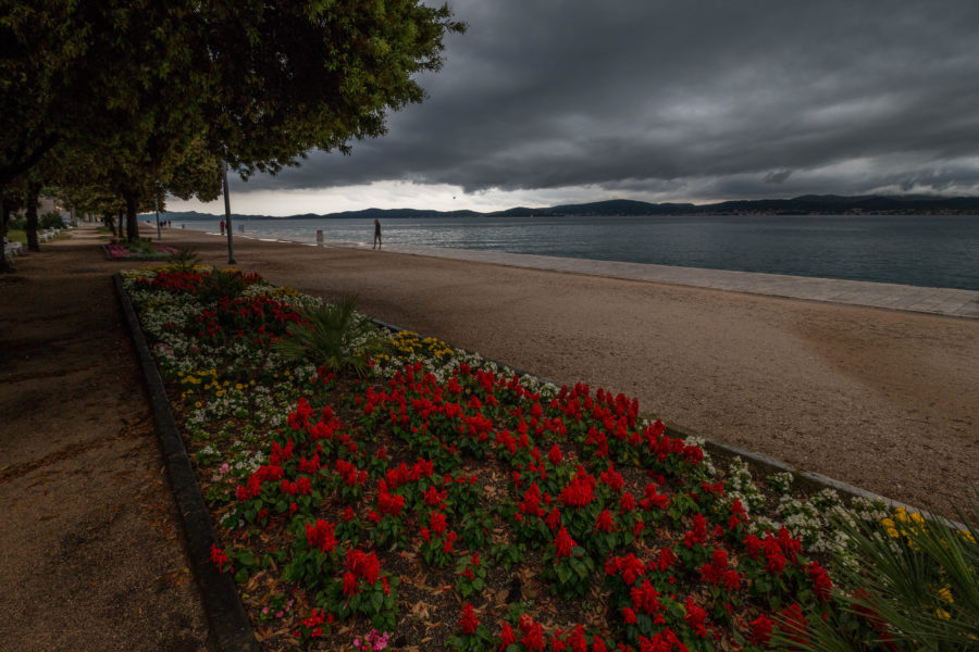 Dark storm clouds coming over the town, red flowers, redish sand/grit and a bit green tree, ocean in the distance