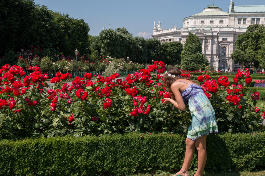 Tegan stopping to sniff the red roses in the gardens