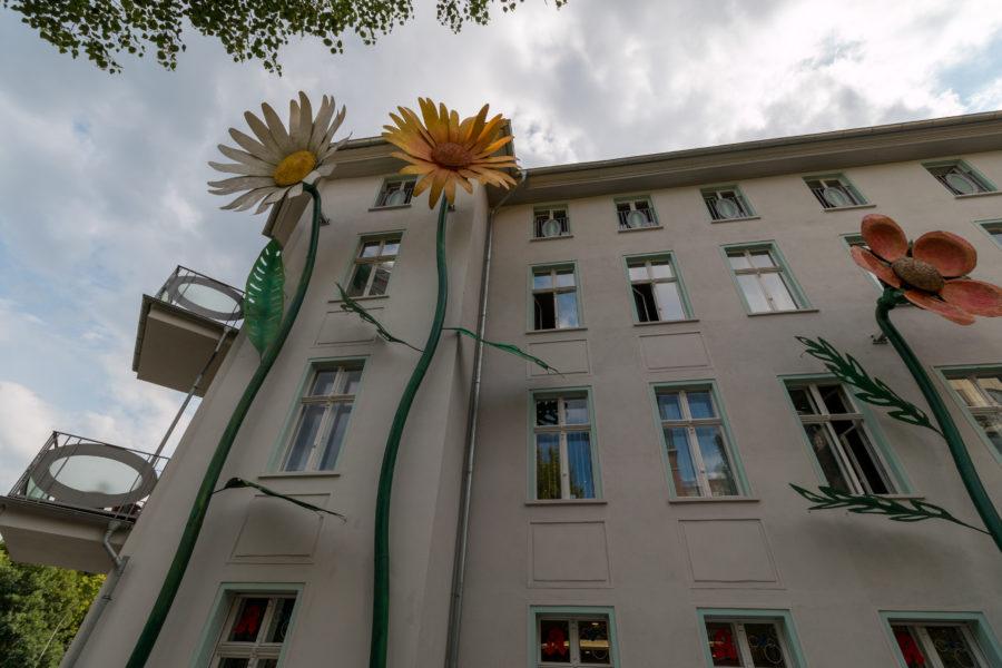 3 story sunflowers alongside a house