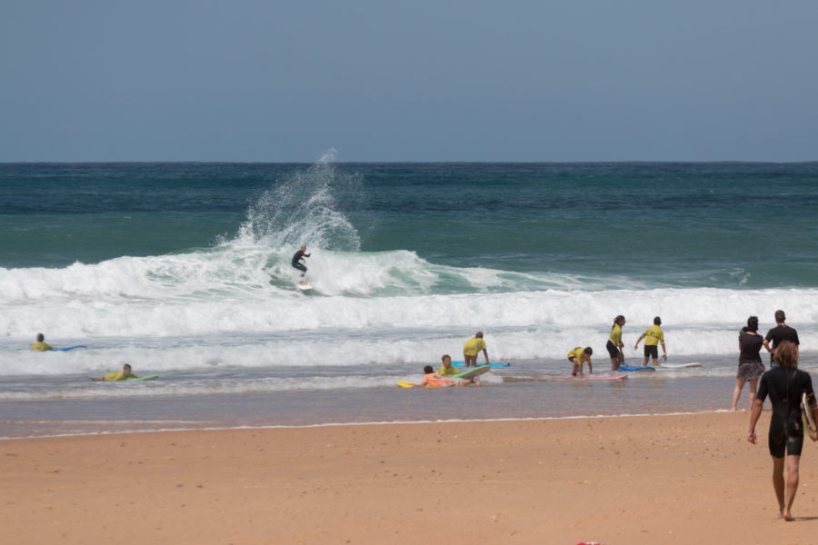 Surfing Carve Sequence