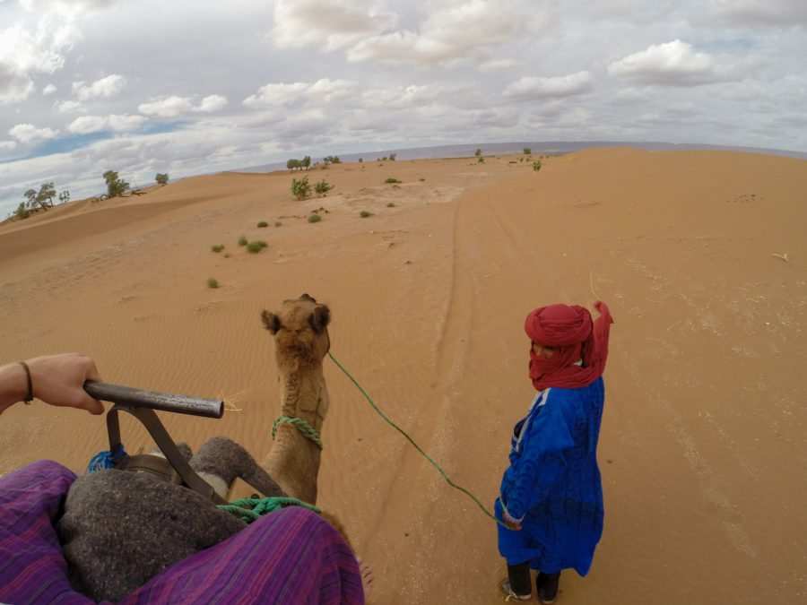 Being led by the Saharian on our camels