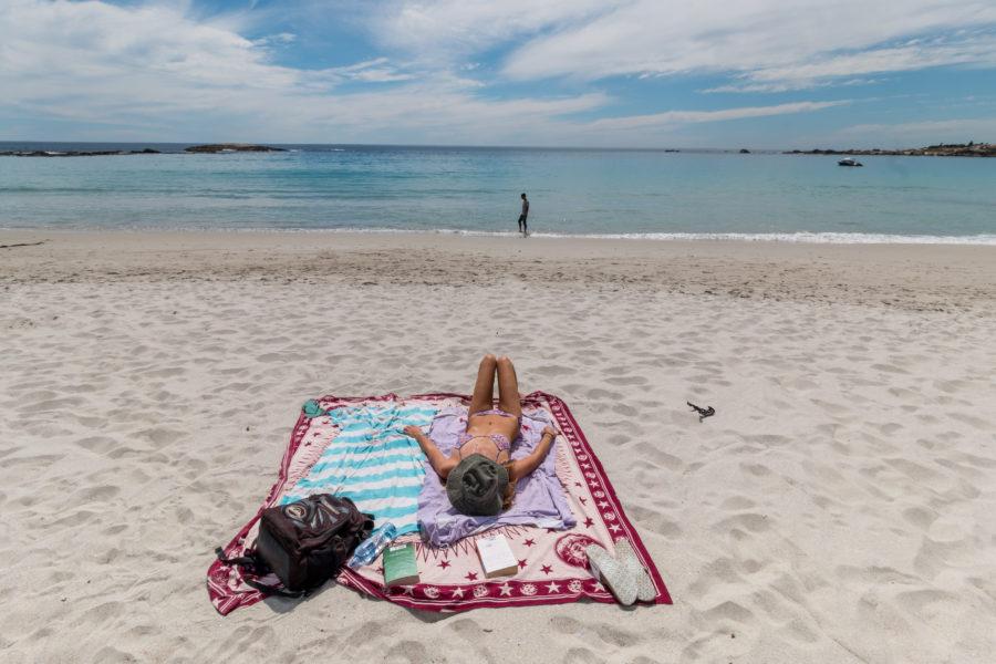 Tegan sunbathing on the beach