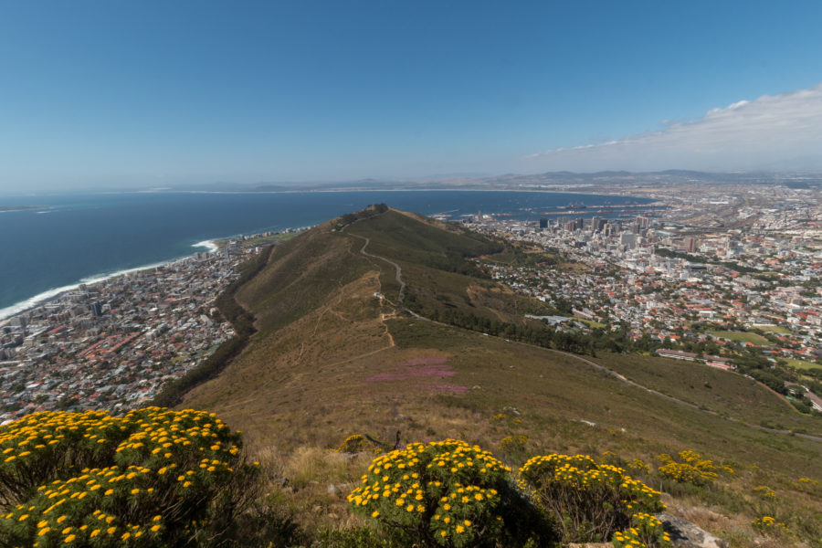 Looking out over Lions Head, so much green!