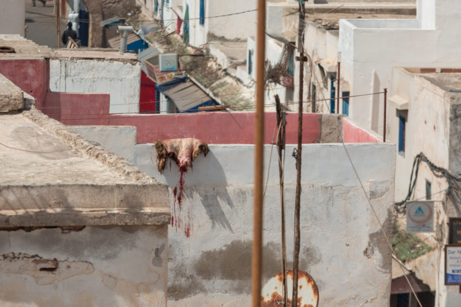 Sheep skin hanging over the fence of the medina, blood dripping out