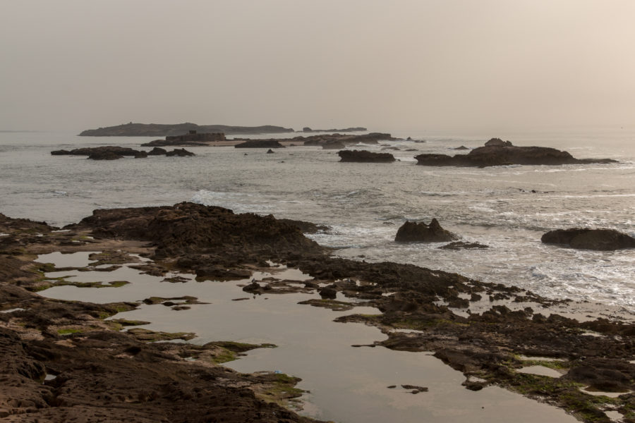 The rock pools at low tide in Essaouira