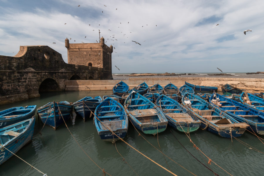 Blue wooden boats tied up in the waters at the Medina