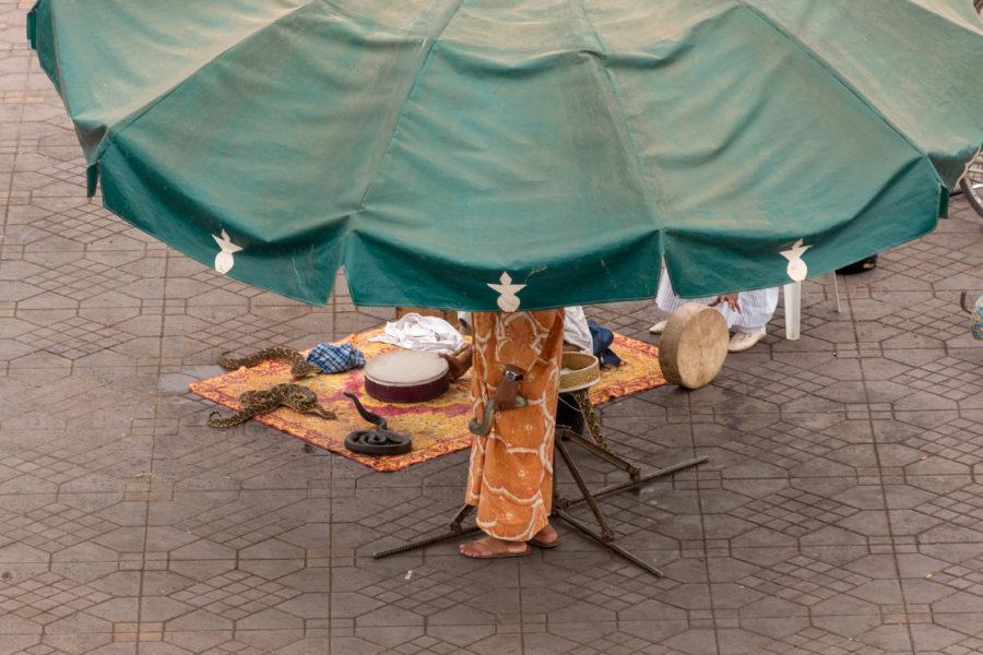 Snake charmer in the medina