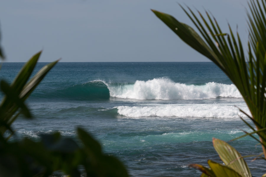 Peaky right hand wave at rams surf break