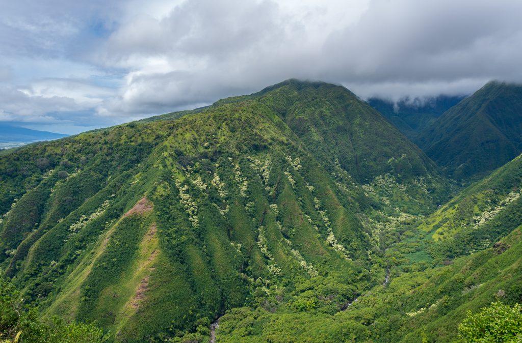 The Hawaii Series – Waihee Ridge Hike Maui